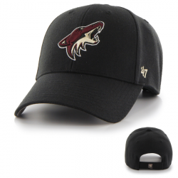 ARIZONA COYOTES NHL...