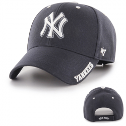 NEW YORK YANKEES DEFROST...