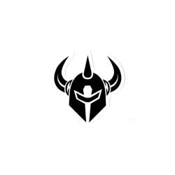 DARKSTAR Logo Sticker