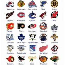 PALET NHL DETROIT RED WINGS